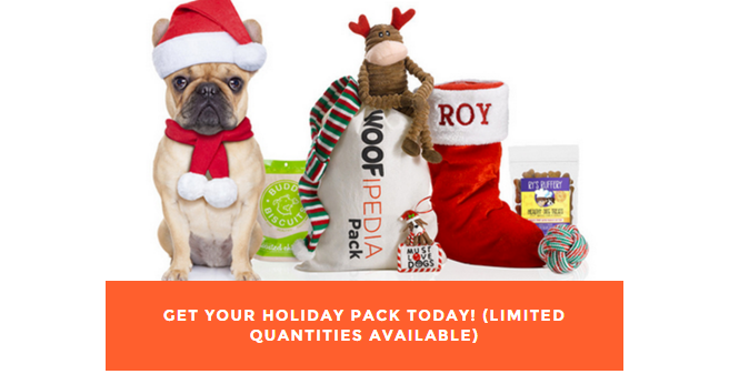 dog holiday pack