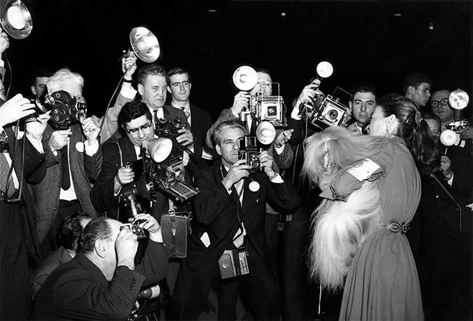 Gossie the great show dog 1960