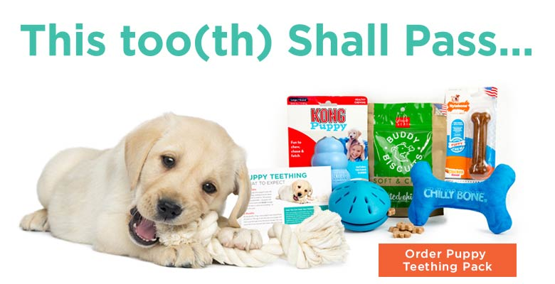 puppy teething pack