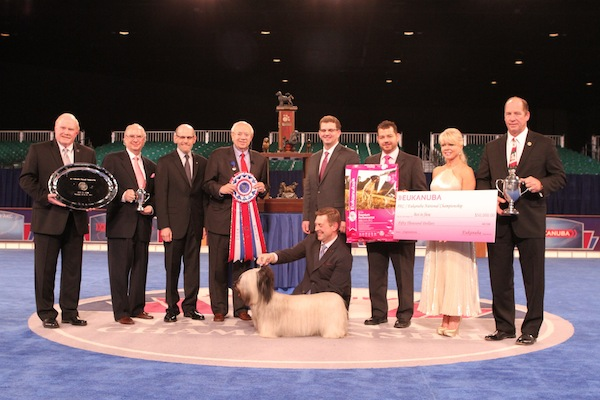 Best in Show at the 2014 AKC/Eukanuba National Championship