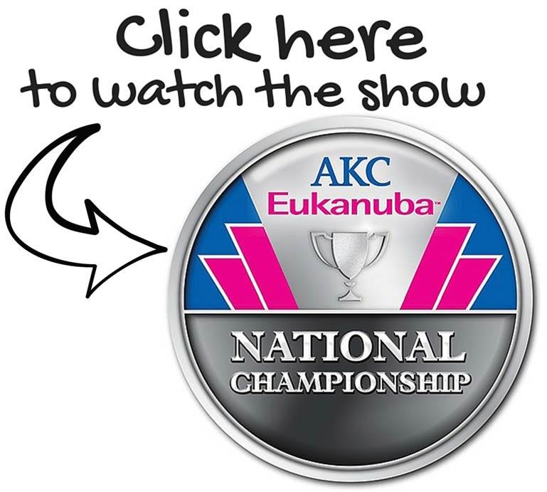 AENC Watch Button