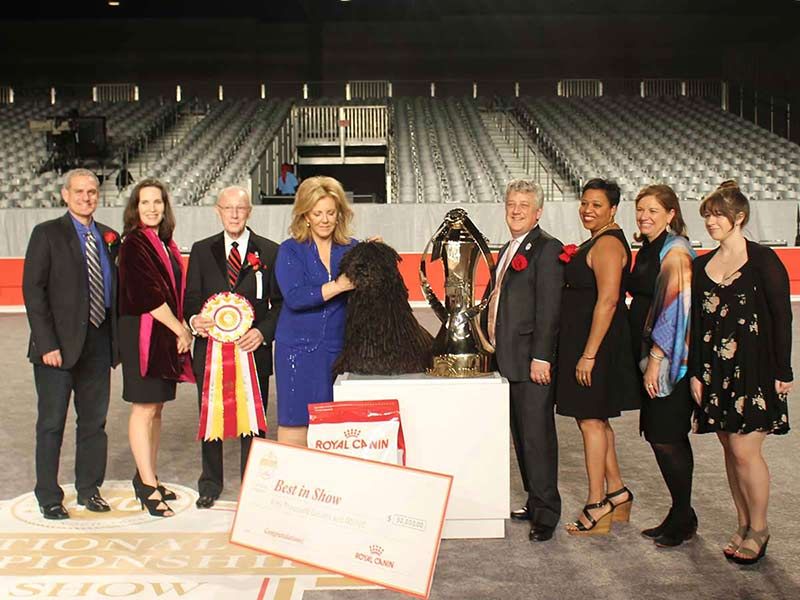 AKC 2016 National Championship Winner