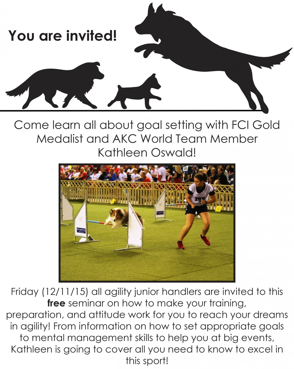 Akc obedience titles junior agility competition american kennel club