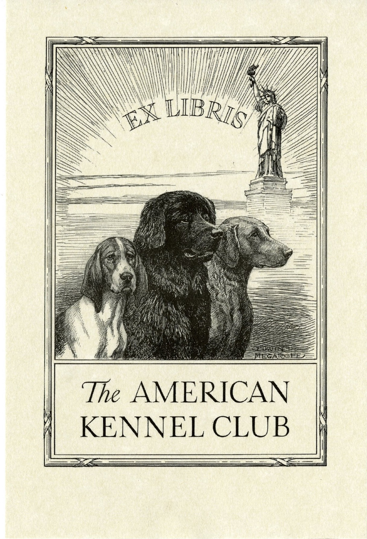 What services does the American Kennel Club offer?