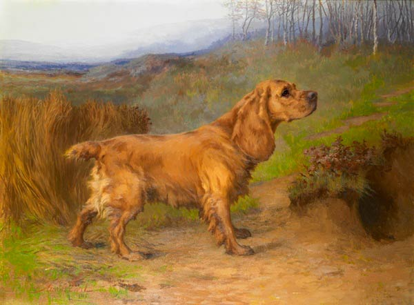 painting of a cocker spaniel