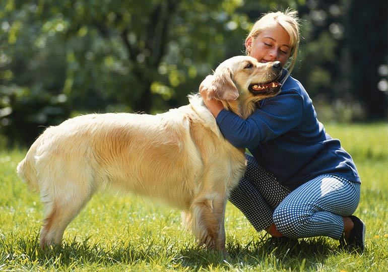 Do Dogs Really Dislike Hugs?