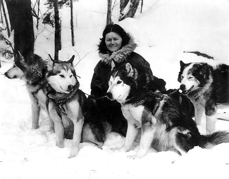 "Eva ""Short"" Seely with four of her famous Chinook Alaskan Malamutes, c. mid-1930s."