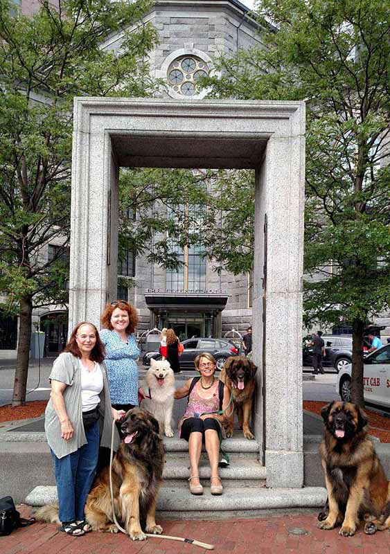 Giant Dogs in Boston 2
