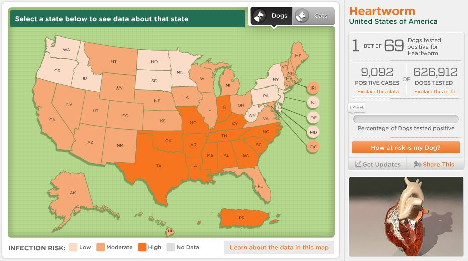 Dog Parasites American Kennel Club - Dog ownership us map
