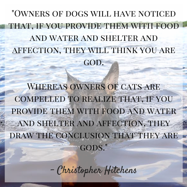 Hitchens Dog Quote