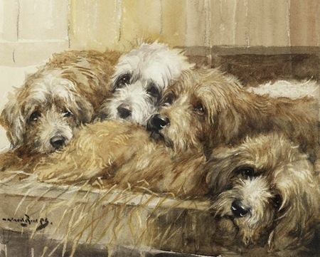 This Centuries Old Breed Doing What They Were Bred To Do Two Otterhounds Working At The Base Of A Tree By Reuben Ward Binks British 1880 1950