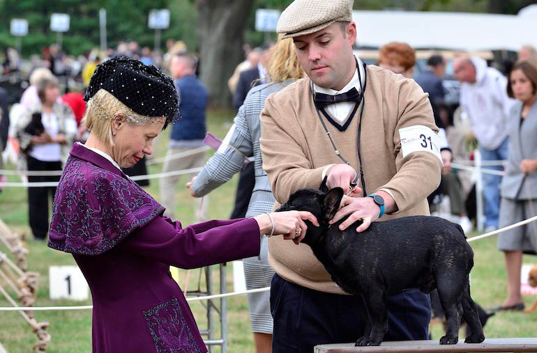 Morris & Essex Kennel Club Dog Show 2015: Photo Gallery (Part Two)