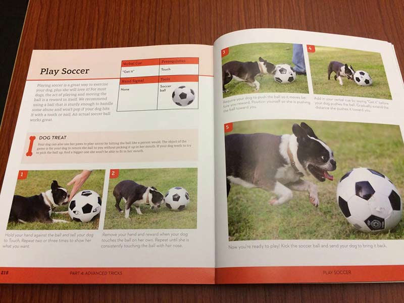 The soccer chapter from dog tricks