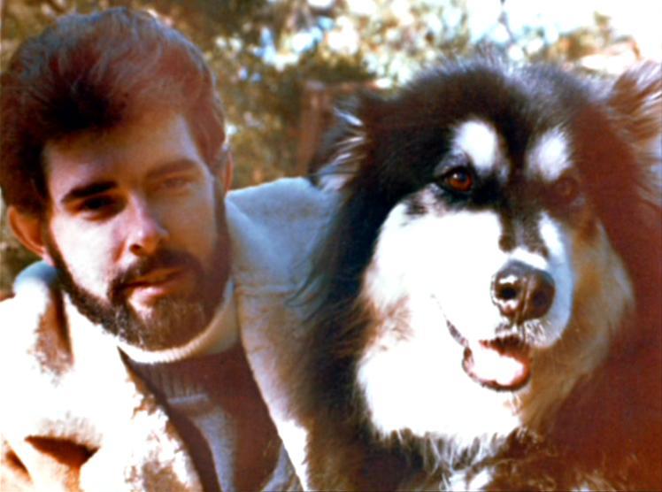 Alaskan Malamute with George Lucas
