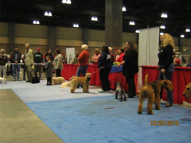 Pet Expo 2