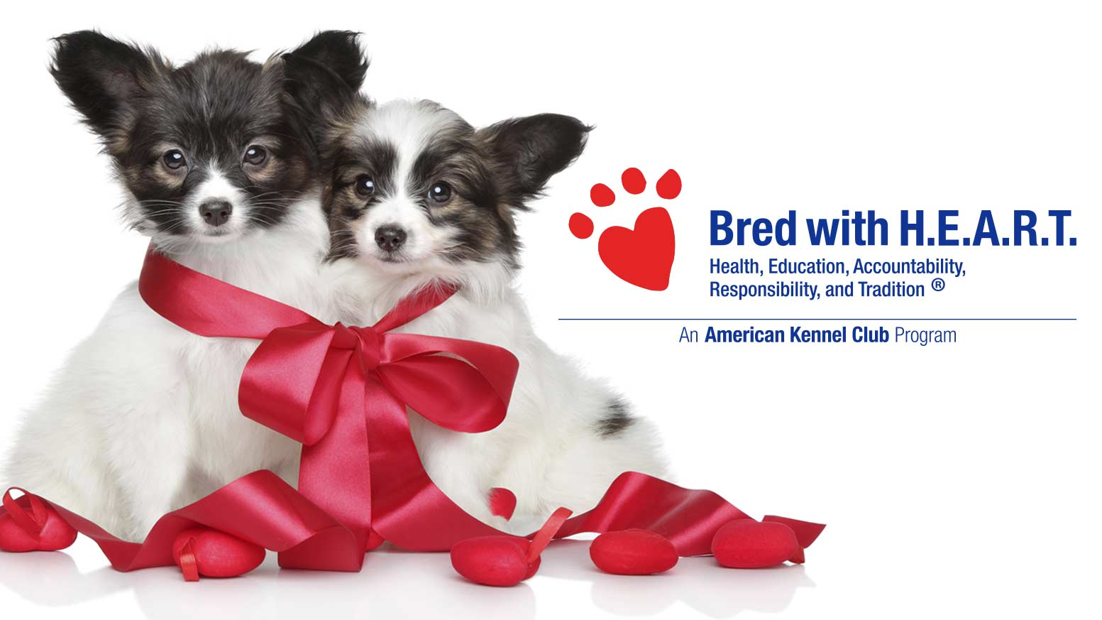 Health Testing Requirements – American Kennel Club