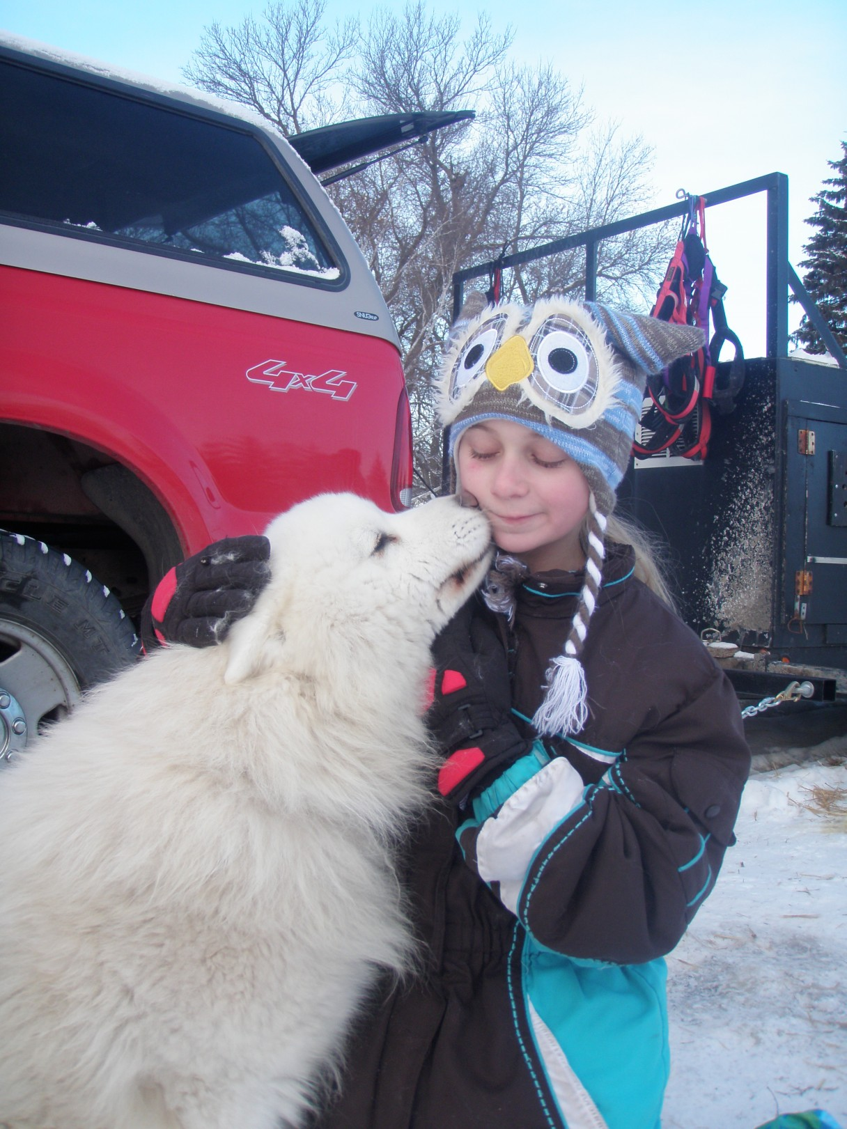 Samoyed kisses