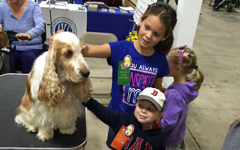 AKC Booth at The Big E Promotes Purebred Dog to 1.3 Million Attendees