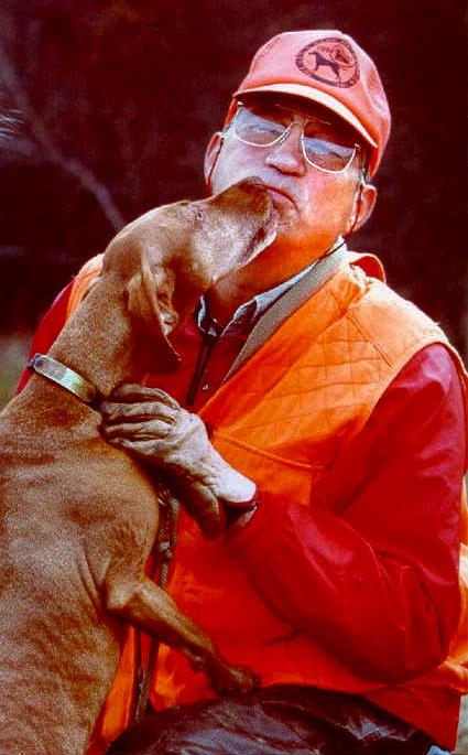 vizsla dog kissing