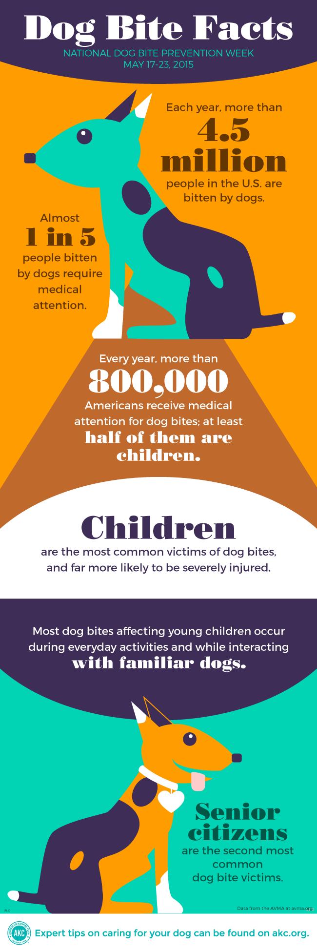 Dog Bite Facts