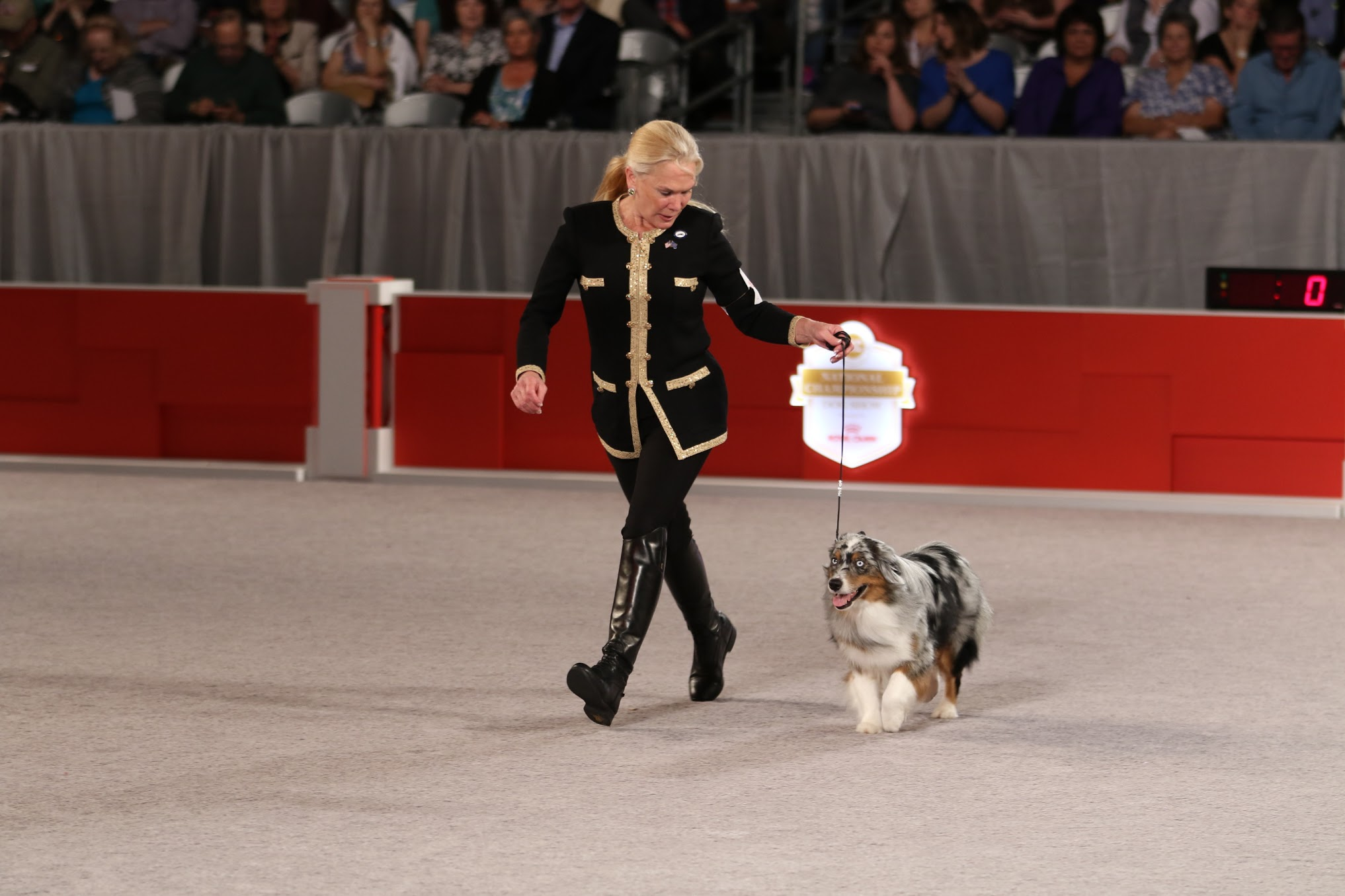 National Dog Show Raleigh Puli