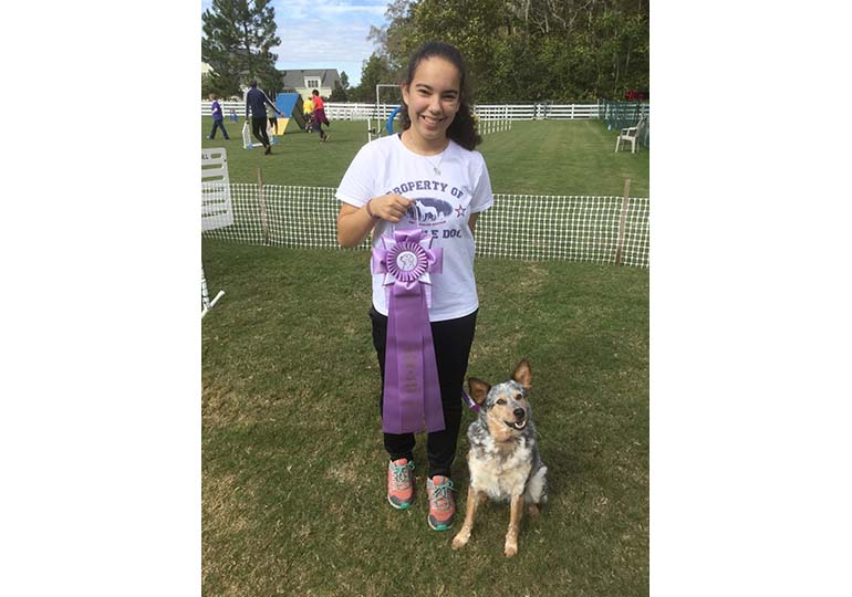 Congratulations To Winners At The Akc Juniors Agility Invitational