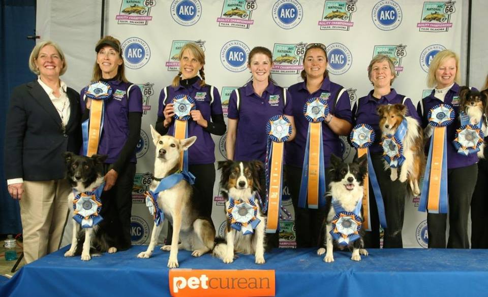2016 AKC National Agility Champions