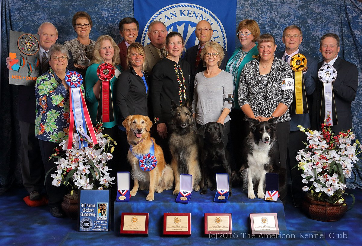 2016 AKC National Obedience Champion