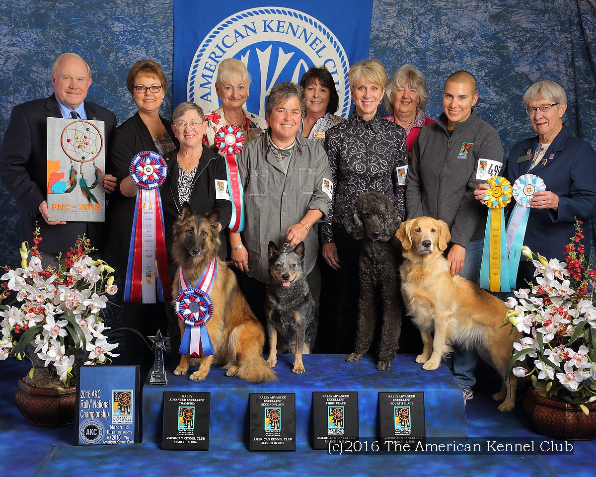 2016 AKC Rally National Champion