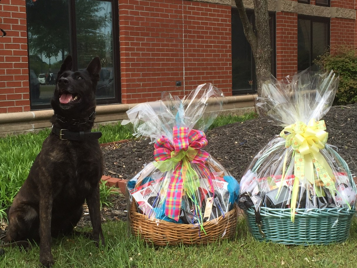 K-9 Enjoys Goodies from Cape Fear DTC