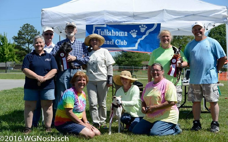 Four Dogs Earn Fast CAT Titles at Tullahoma Kennel Club Event