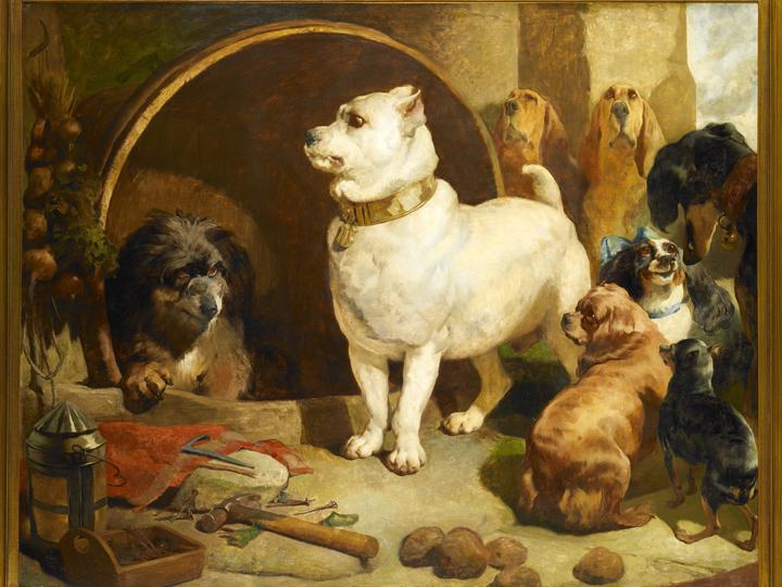 Pup Culture Alexander And Diogenes Landseer S Little