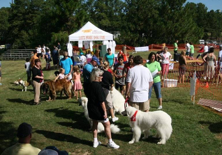 Join Us in Celebrating AKC Responsible Dog Ownership Days!