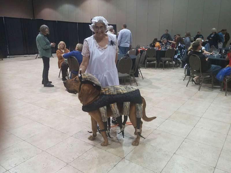 Bloodhound national 5