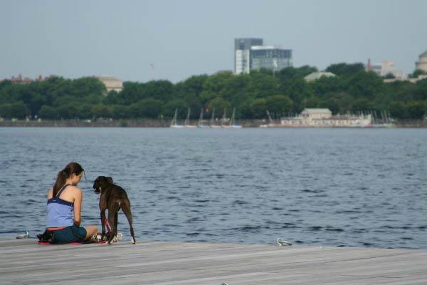 boston girl with dog