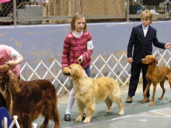 Carolyn age 11 Junior Showmanship