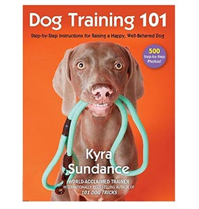 DogTraining101