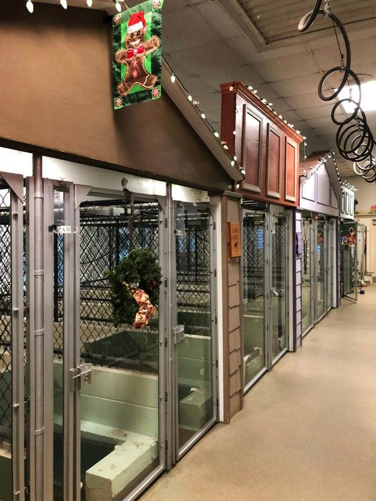decorated kennel