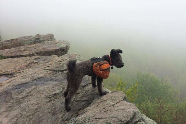 pumi hiking