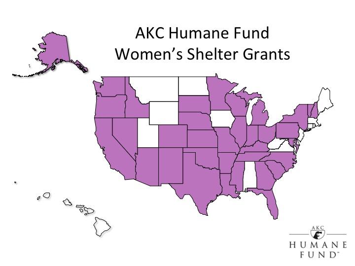 women's shelter grant program graph