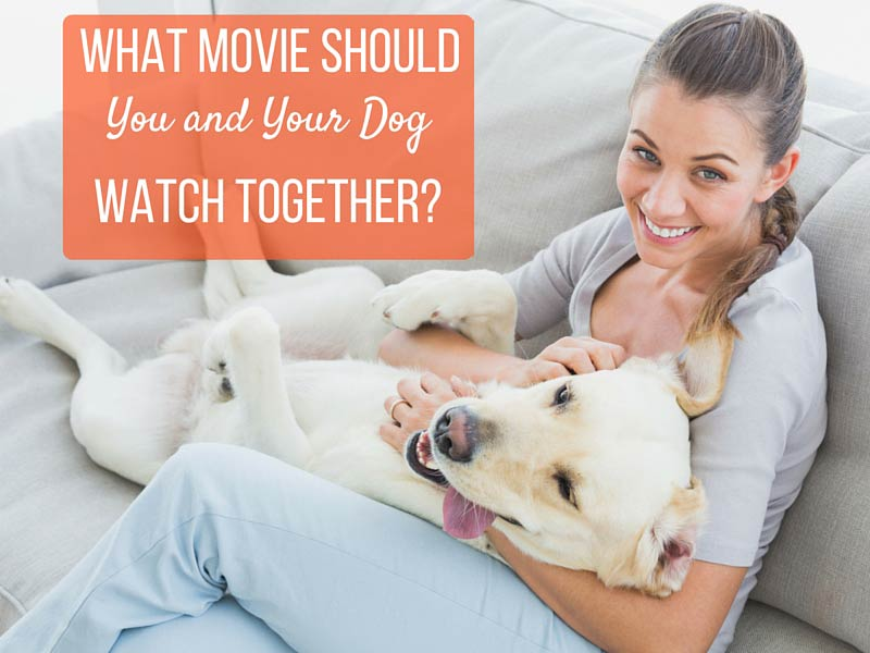 what movie should you watch with your dog