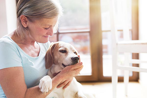 33 pc reduction? Your dog is protecting you from this disease