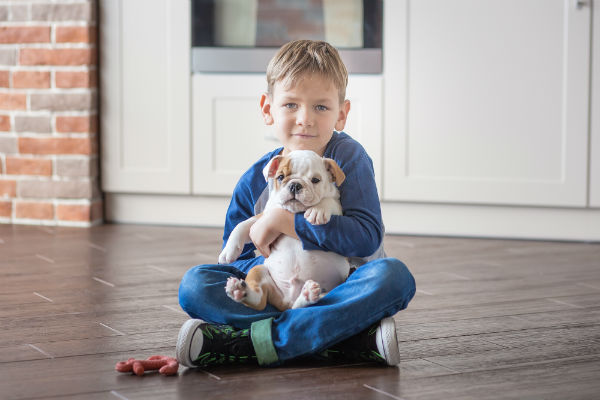 bulldog_with_kid