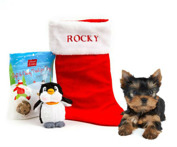 small dog gift pack