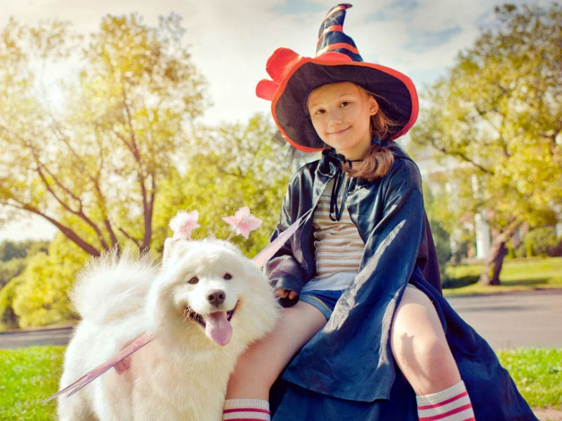 10 matching halloween costumes for kids and dogs