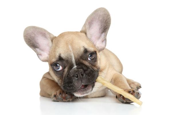 жевательная палочка для собак