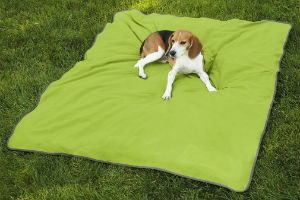 dog insect blanket