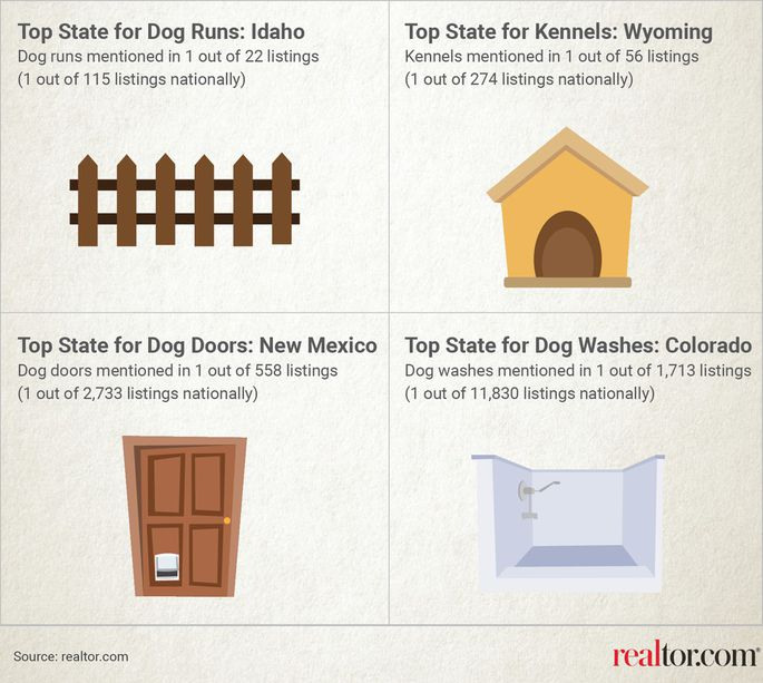 dog_realtor_graphic
