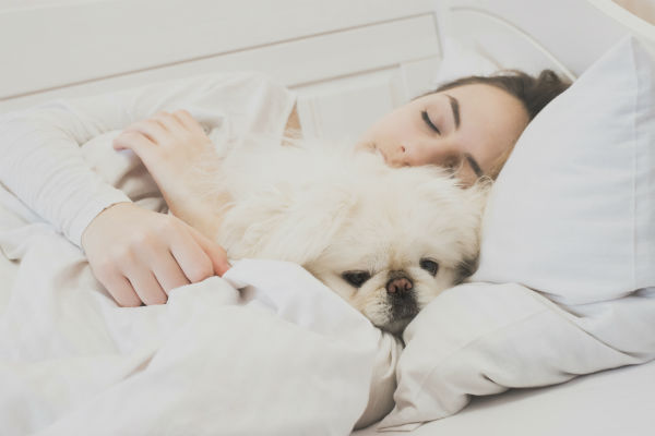 girl_and_dog_bed