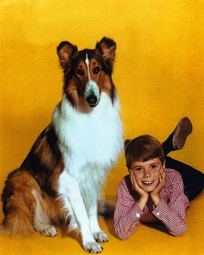 lassie and jon